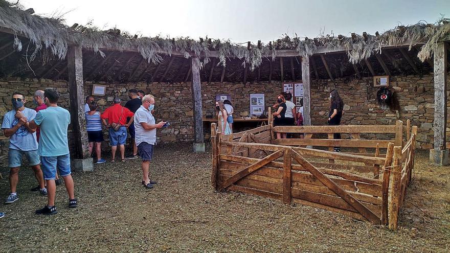 Exaltación de la vida pastoril en Riofrío de Aliste