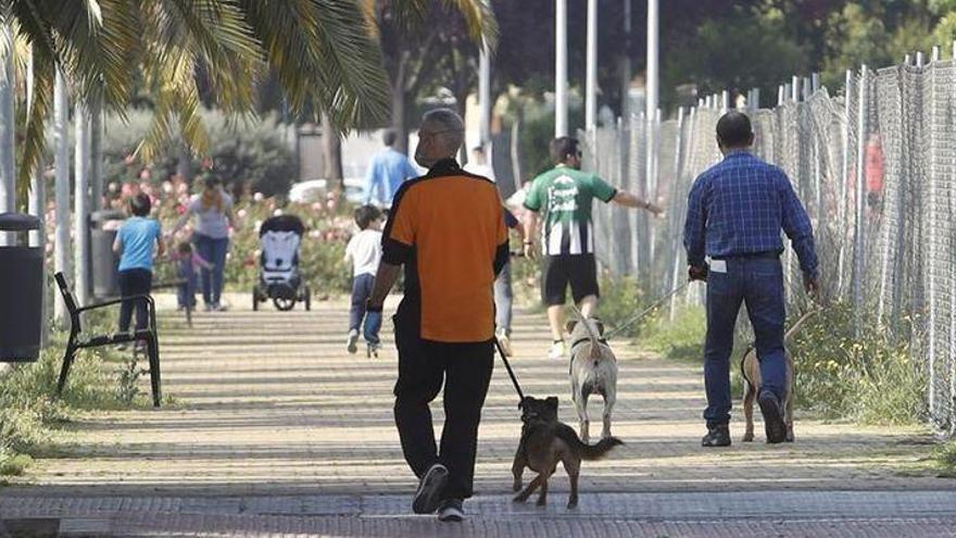 Castelló registra dos denuncias por incumplir las normas de la orden de salida con menores