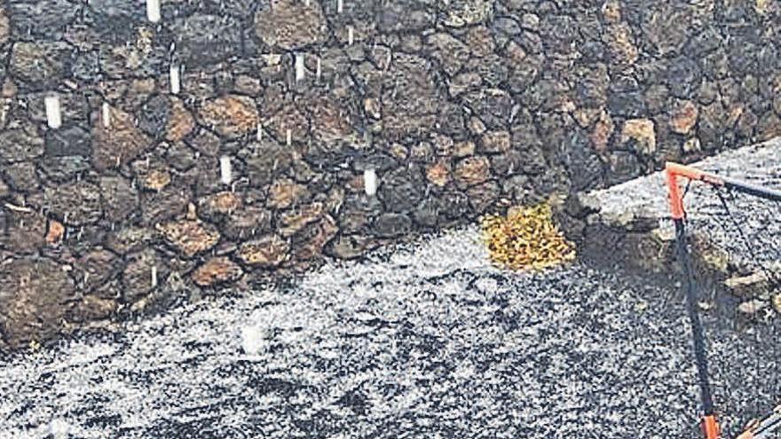 Las tierras agrícolas de la Geria de Lanzarote se cubren de un manto de escarcha