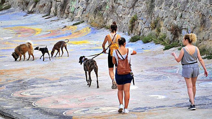 Otoño de paseos saludables en Elche