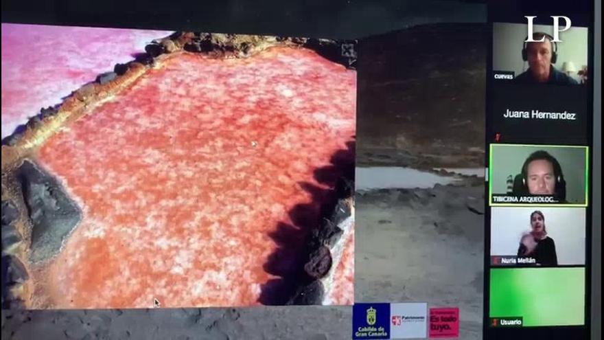 Los Jardines de Sal, primera visita digital del Cabildo para dar a conocer el patrimonio