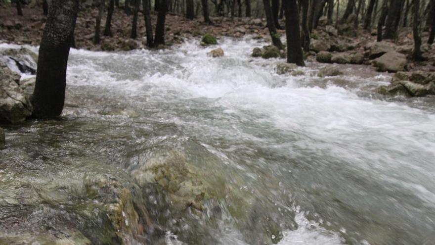 Auf Mallorca tritt das Wasser wieder aus dem Boden