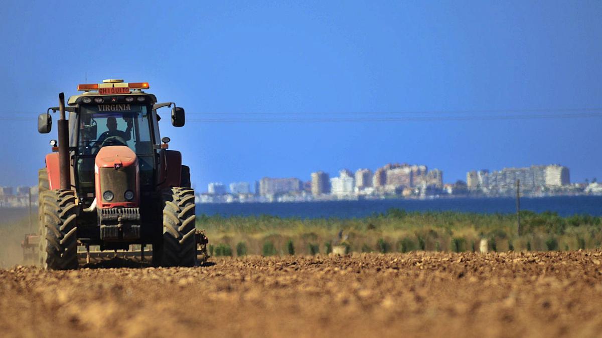 Terrenos de cultivo frente al Mar Menor.