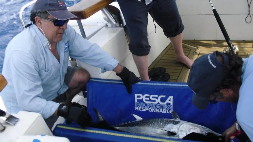 Pesca Responsable lleva ante el Defensor del Pueblo las restricciones para poder pescar atún rojo