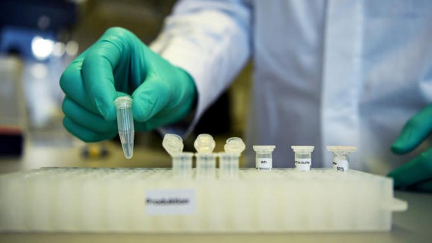 Canarias registra 91 nuevos casos de Covid-19 en una jornada con dos defunciones