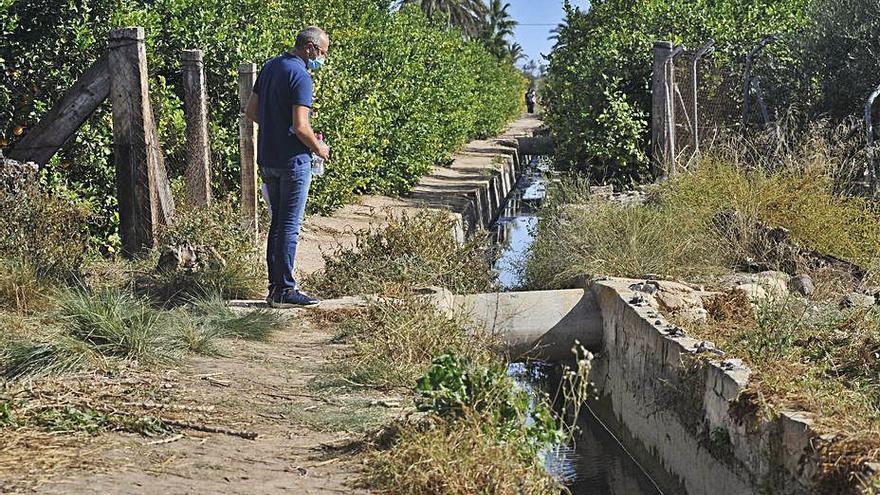 Vecinos de La Hoya urgen que se resuelva el crimen