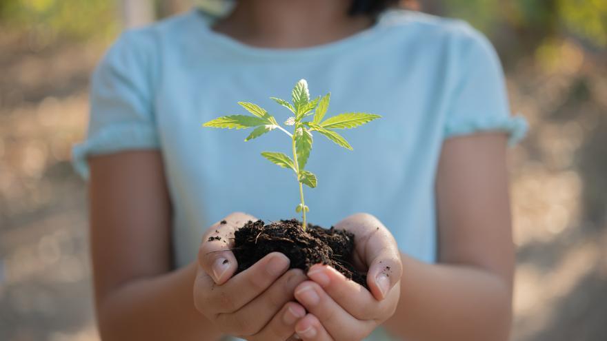 Sostenibilidad desde la infancia: claves para educar a nuestros hijos sobre el medio ambiente