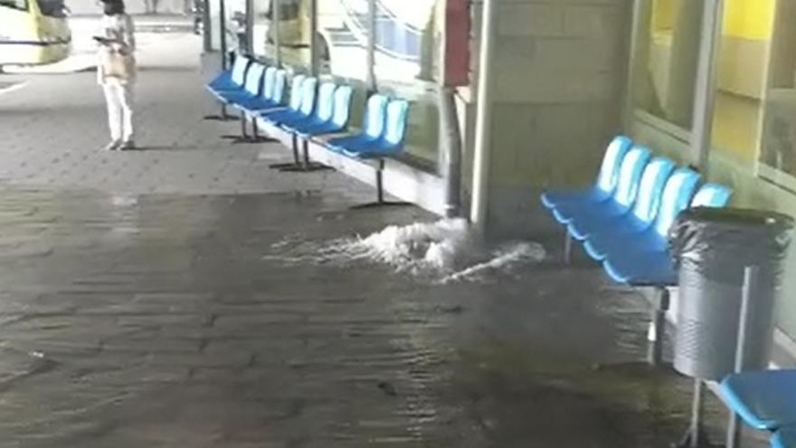 VÍDEO | La estación de autobuses de Zamora, con goteras en varios locales y las dársenas