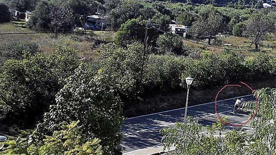 El aumento de barracas alerta a los vecinos de Son Serra Parera