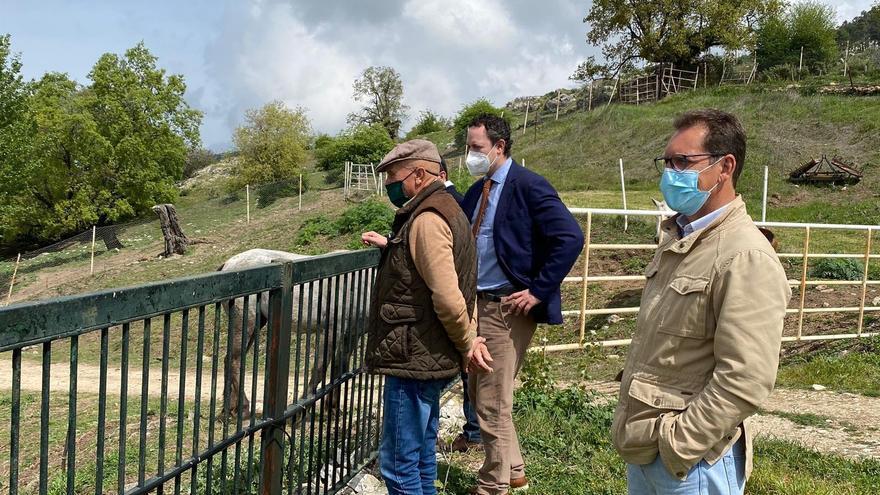 La Junta convoca ayudas al sector equino, cuyo censo en Córdoba asciende a casi 20.000 animales