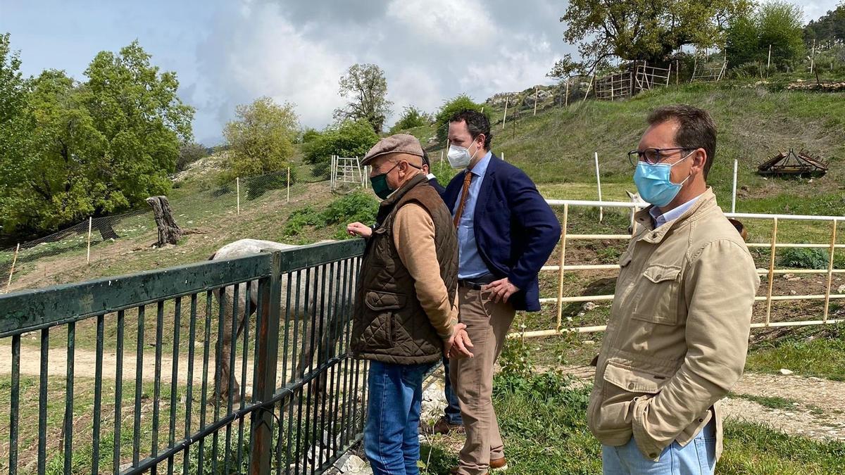 El delegado de Agricultura, Ganadería y Pesca de la Junta de Andalucía en Córdoba, Juan Ramón Pérez, visita una explotación equina.