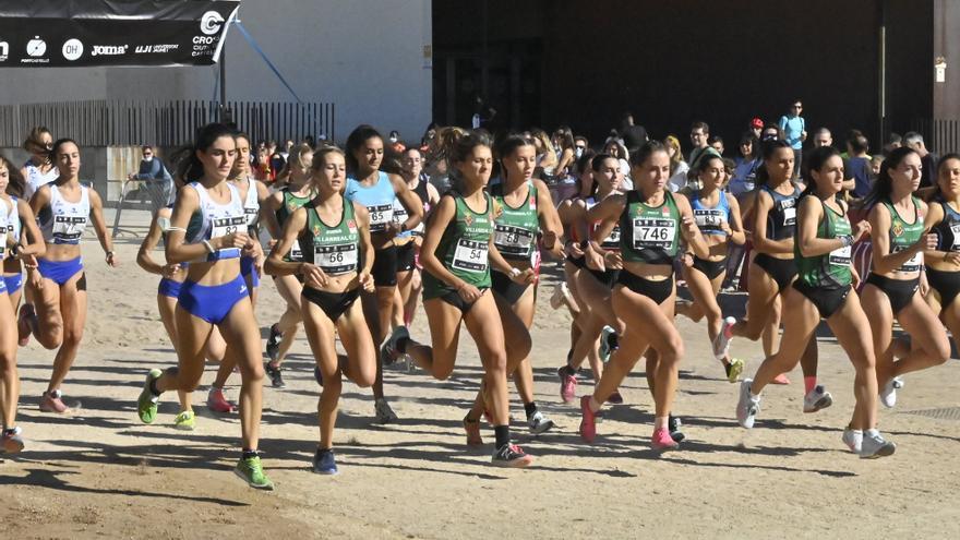 Castelló se convierte en el epicentro del cross en un gran evento matinal
