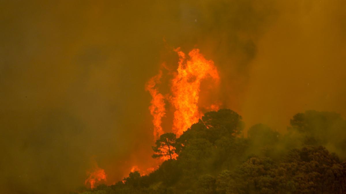 Incendio en Sierra Bermeja.