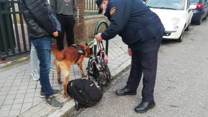 Drones y perros para detectar movimiento de drogas en los entornos escolares de Vigo