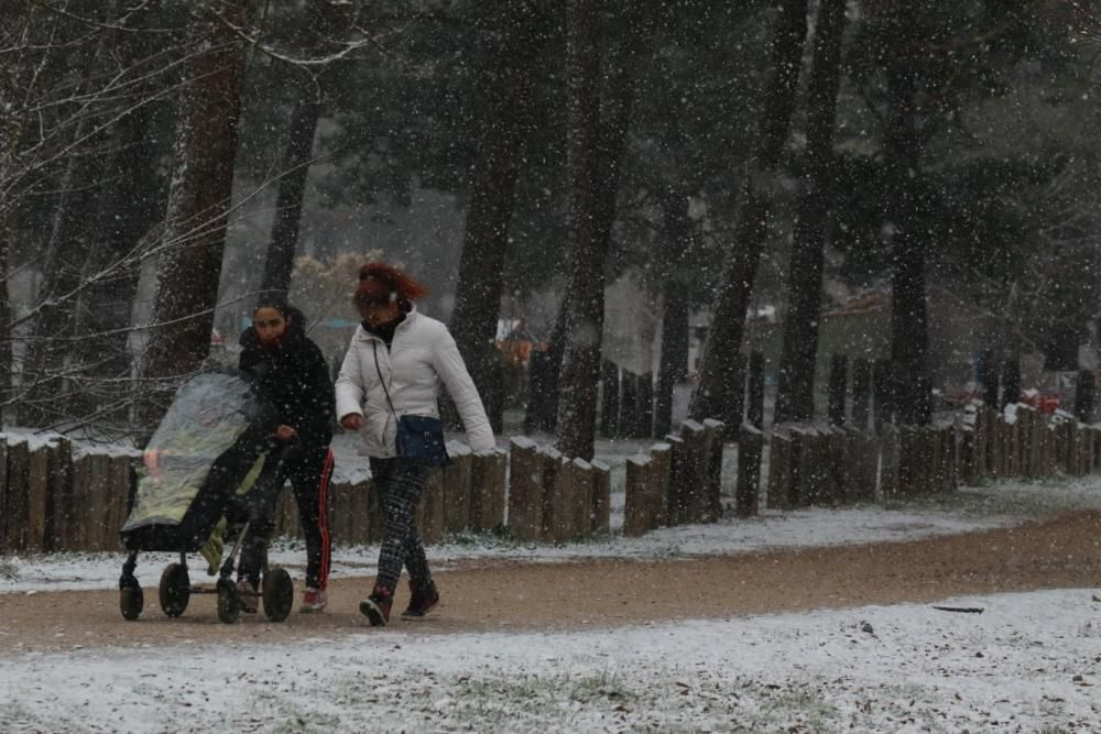 Primera nevada en Zamora capital