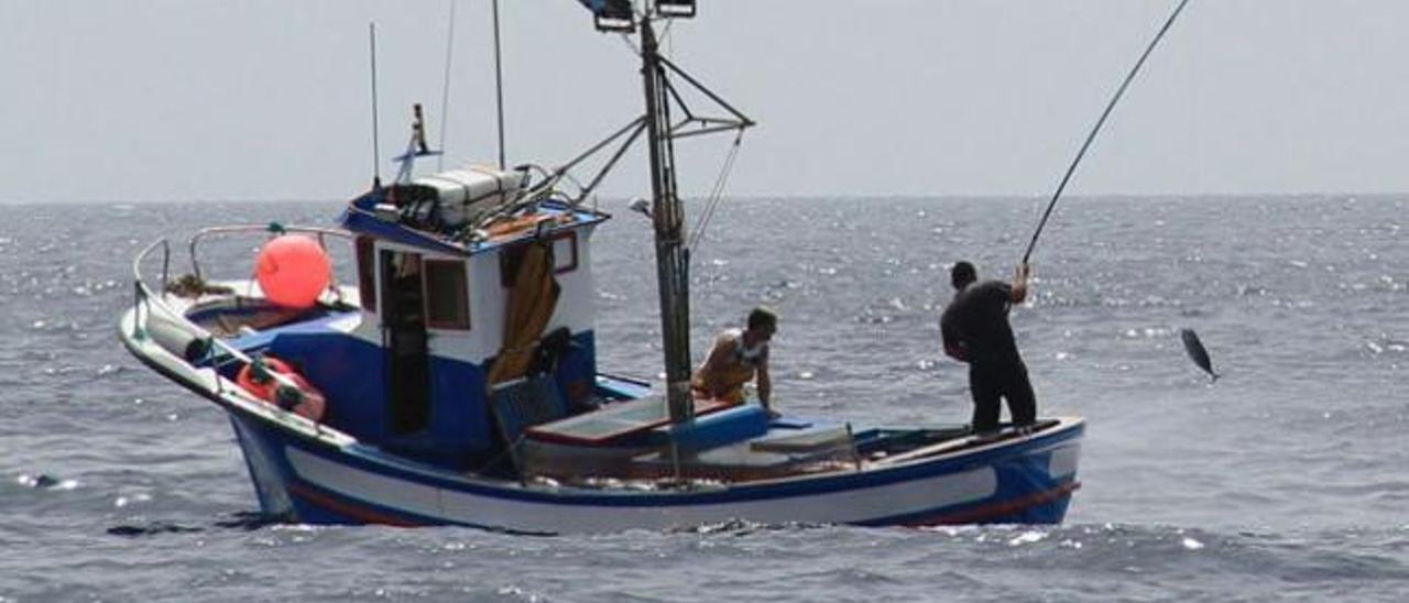 El 34 % de las 450 licencias pesqueras en la reserva marina son para jubilados