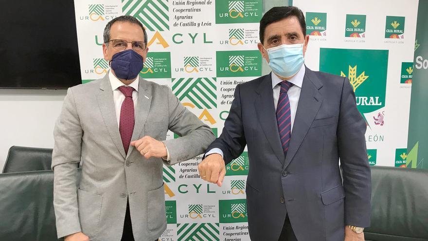 Las cajas rurales de Castilla y León fomentarán el cooperativismo