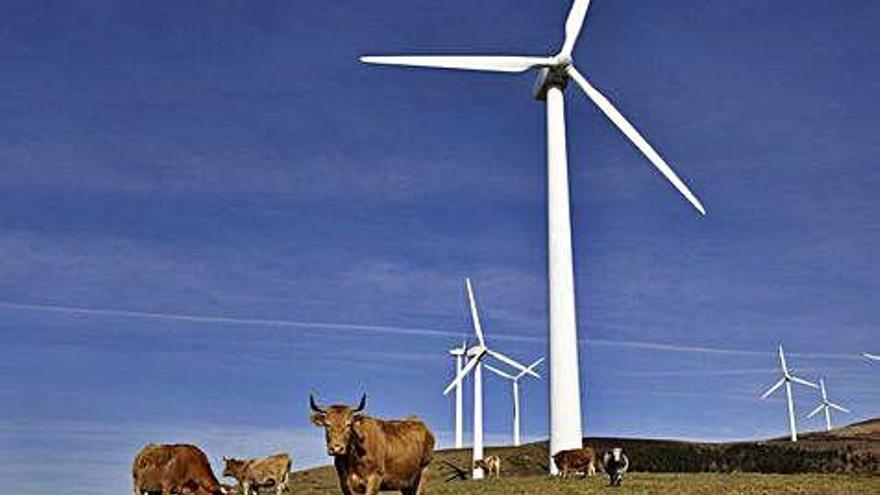 La Xunta propone ampliar de 4 a 6 años las declaraciones de impacto ambiental