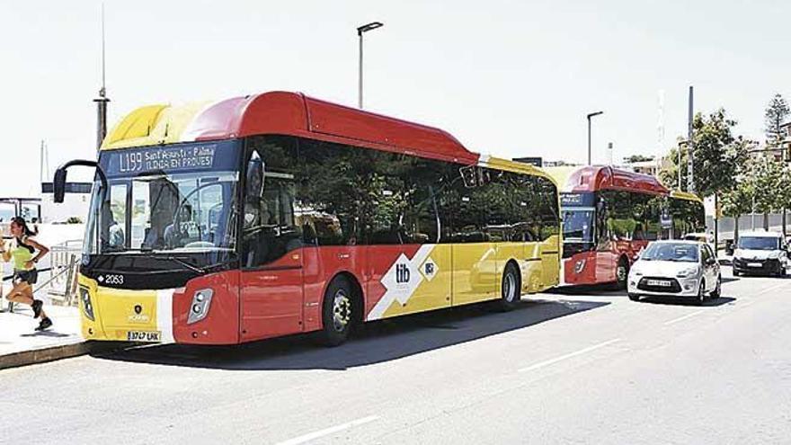 Los nuevos autobuses TIB arrancan: cambios en las tarifas y más rutas