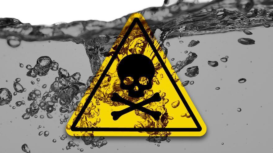 """Envenenados por la colza, la """"epidemia"""" de los 80"""