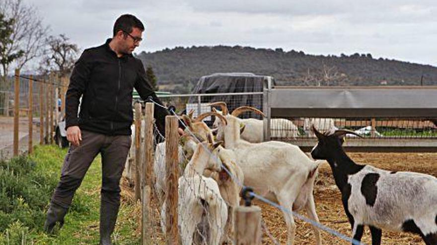 Warum immer mehr junge Menschen auf Mallorca Bauern werden