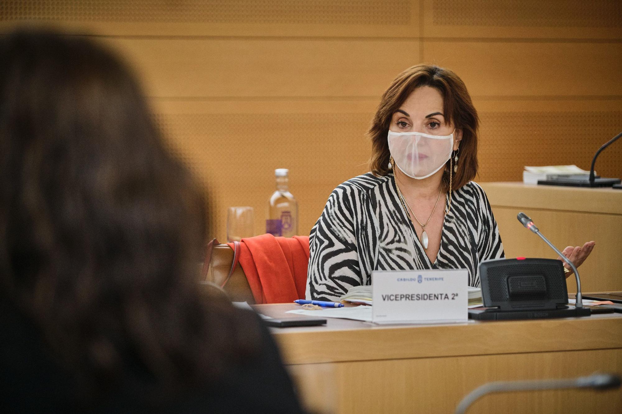 Pleno Extraordinario del Cabildo de Tenerife