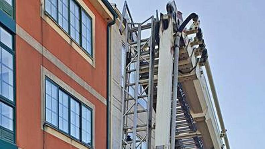 Los bomberos retiran un nido de velutina en un edificio del casco urbano agoladés