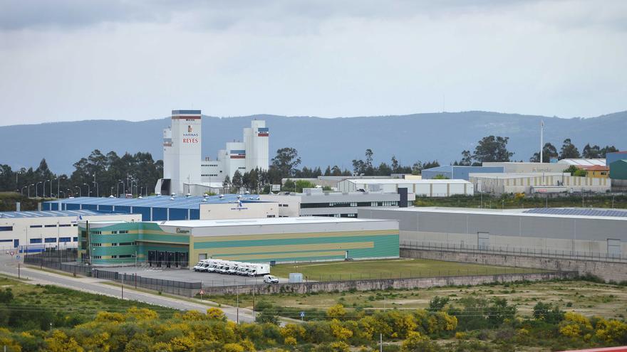 Pontevedra tiene menos paro que al inicio de la pandemia tras ganar 835 trabajadores