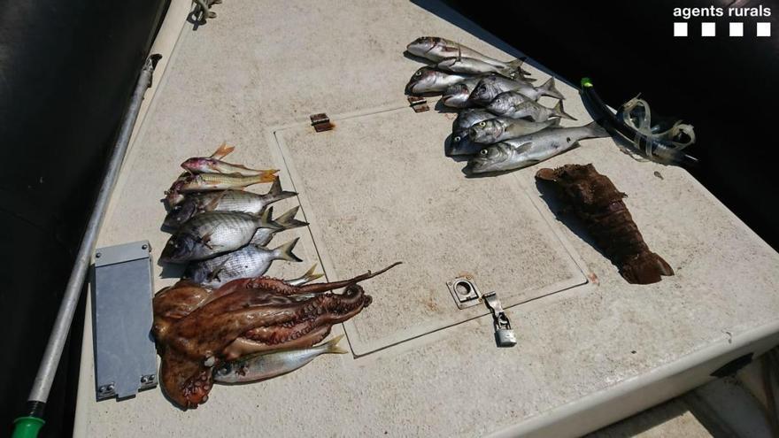 Enxampen dues persones fent pesca submarina en un espai prohibit del Cap de Creus