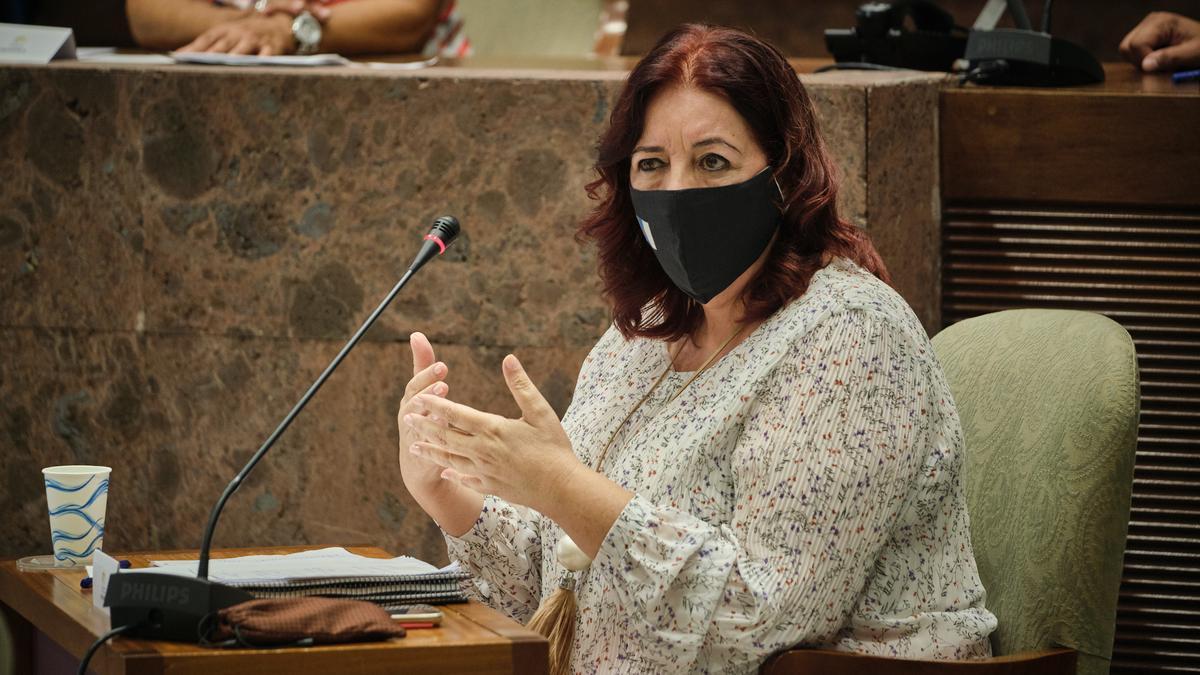 La consejera de Educación del Gobierno de Canarias, Manuela de Armas, durante una comisión parlamentaria.