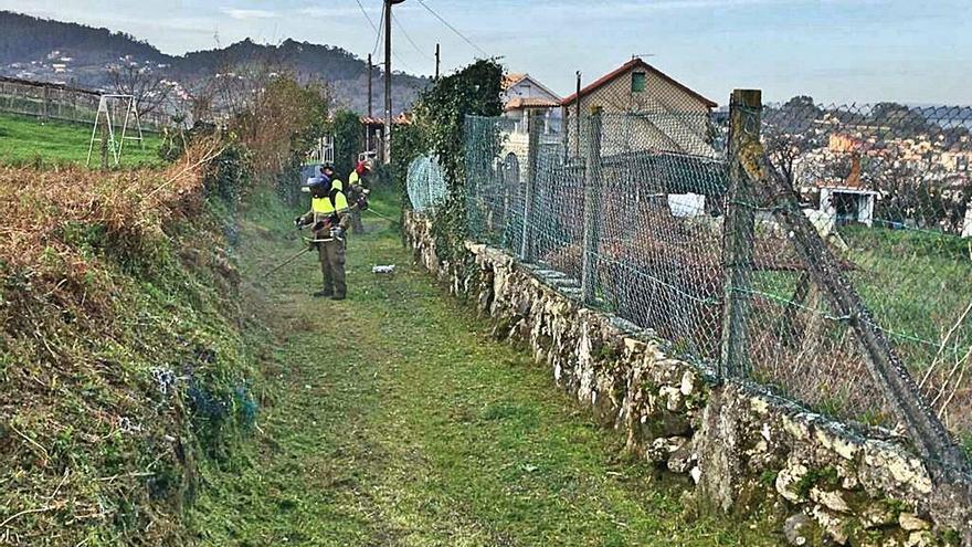 Medio Rural creará brigadas especializadas para vigilar la limpieza de las parcelas