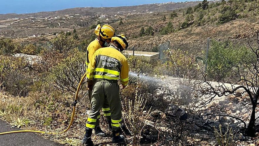 Actúan en conatos de incendio en Arico, Adeje y Mazo