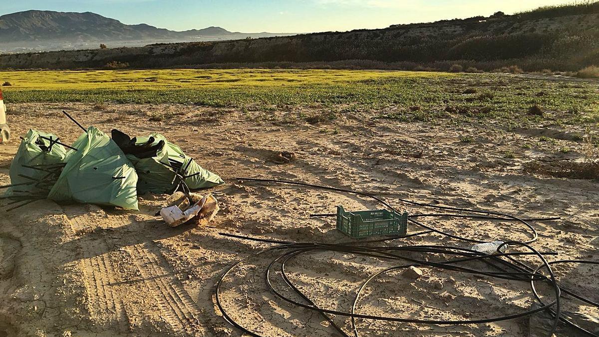 Residuos recogidos en los Saladares del Guadalentín.  | @JCNATUR