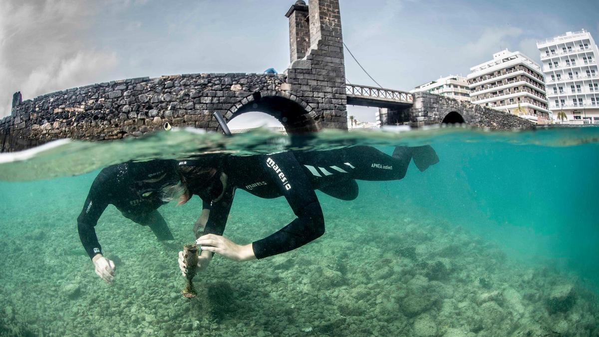 Uno de los fotogramas del documental Los Secretos de la Marina de Arrecife