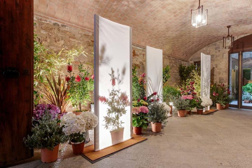 """Consulta les millors imatges del llibre """"Girona, Temps de Flors 2018"""""""