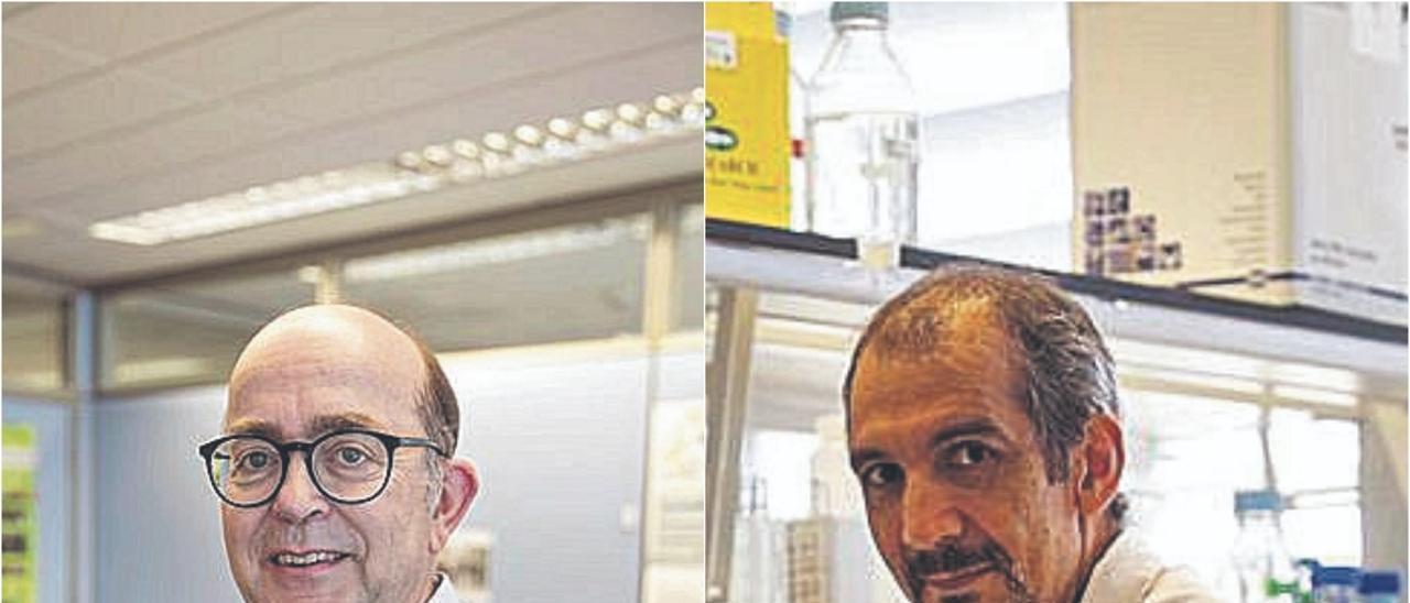 Javier Diez y Santiago F. Elena
