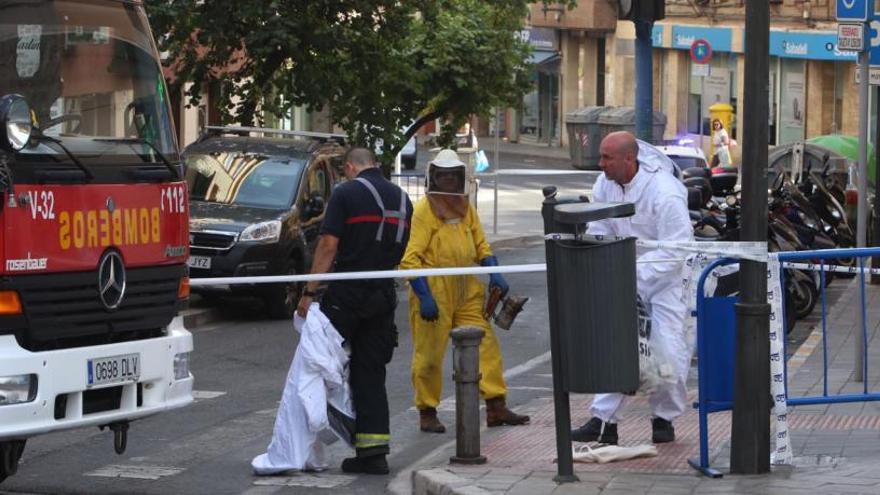 Cortan una calle en el barrio alicantino de San Blas para retirar un enjambre de 50.000 abejas muy agresivas