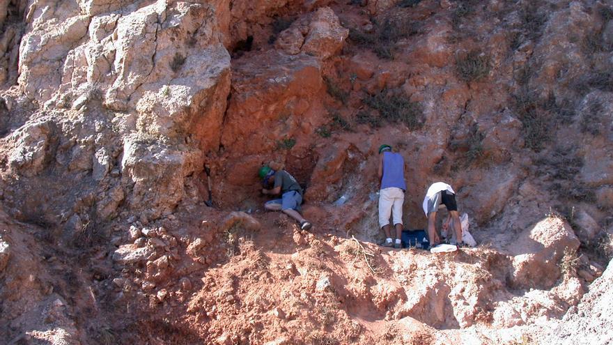 La 'Atapuerca valenciana', de albergar el fósil del tejón más antiguo de Europa a estar abandonada en Almenara