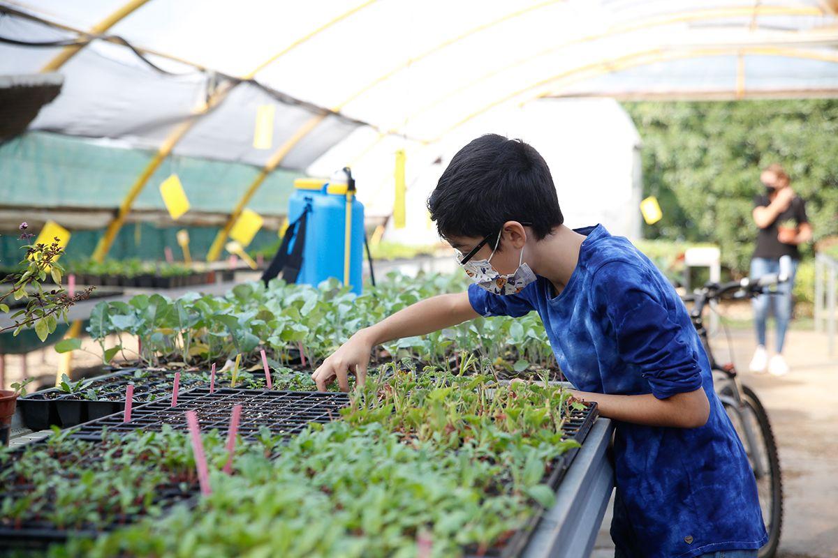 Taller de jardinería para la familia en el jardín botánico