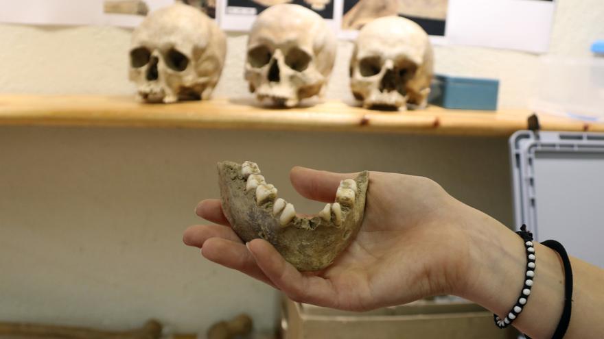 Identifiquen restes de 50 individus prehistòrics al Roc de les Orenetes, una necròpolis que va servir durant mil anys