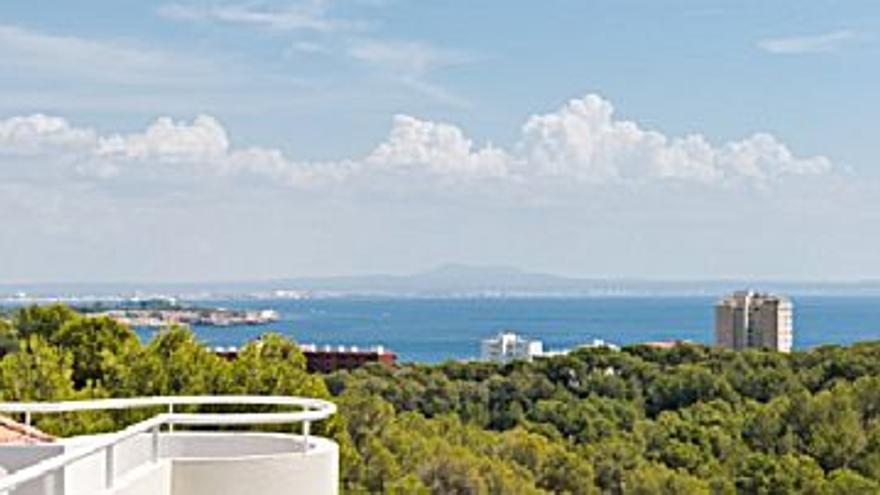2.575 € Alquiler de ático en ES CAMP DE MAR (Andratx), 2 habitaciones, 2 baños...
