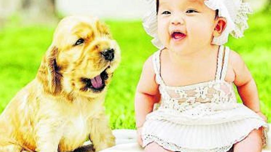 Reír y llorar en el mundo animal