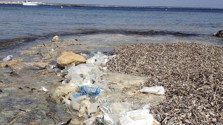 Bei jedem Strandbesuch ein bisschen Plastikmüll weniger