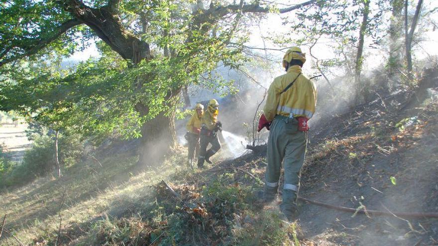 Trabajos de extinción de un incendio forestal
