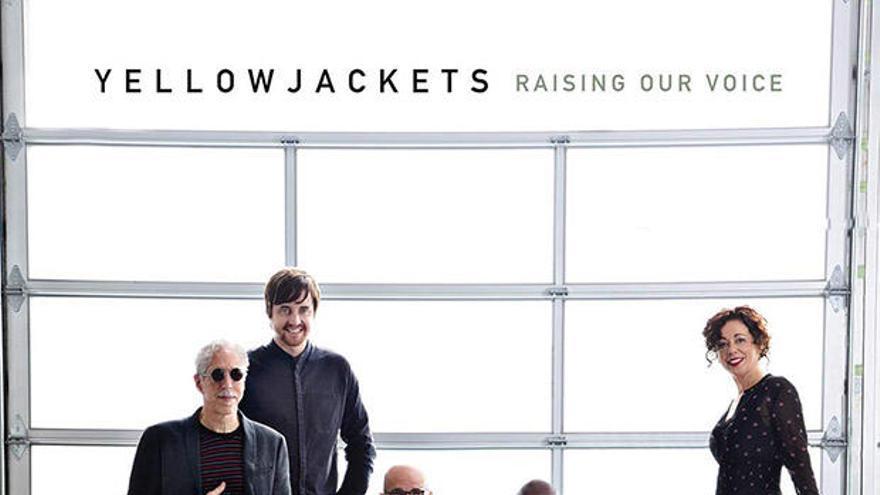 Jazz-Band Yellowjackets auf Mallorca: Sound der bösen Wespe