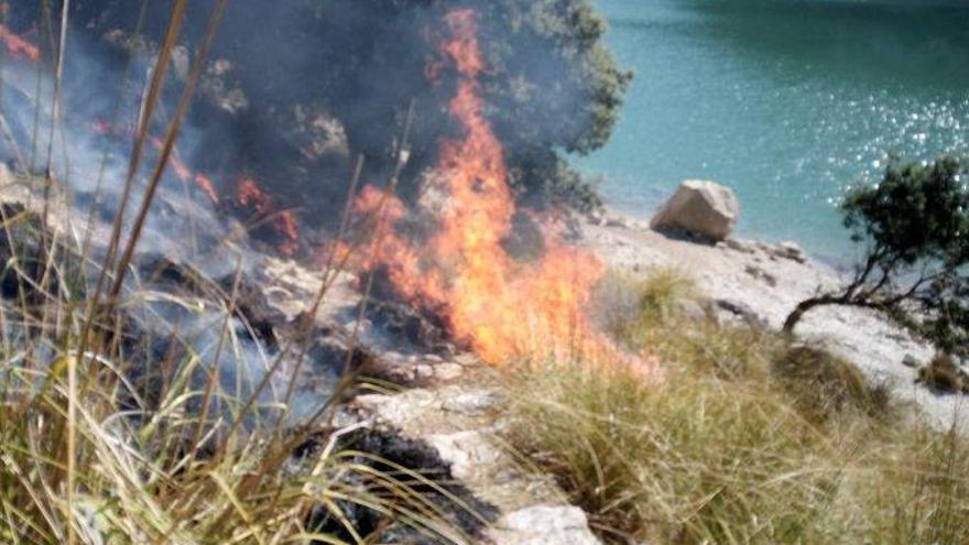 Sofocan un incendio de cañizo junto al Gorg Blau