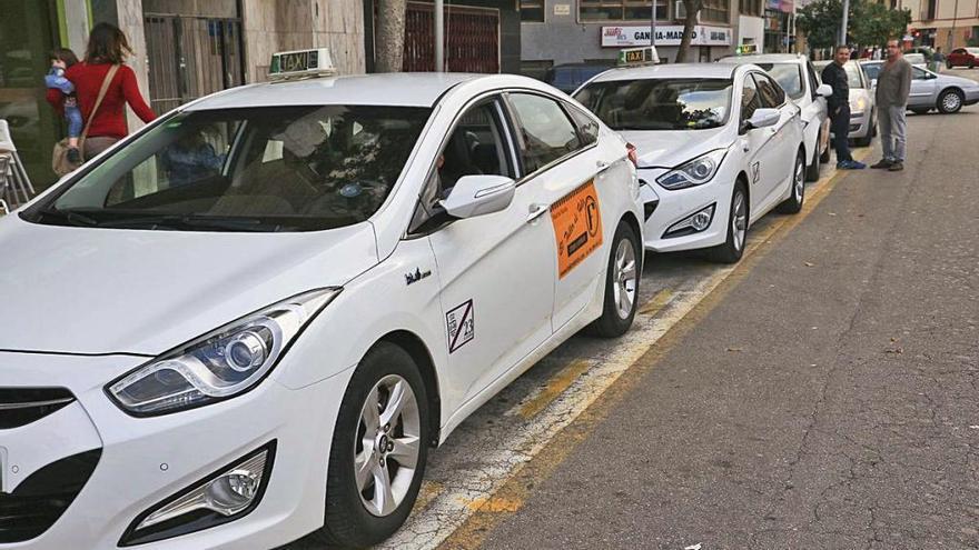 Los taxistas de Gandia se defienden y dicen que el servicio es suficiente