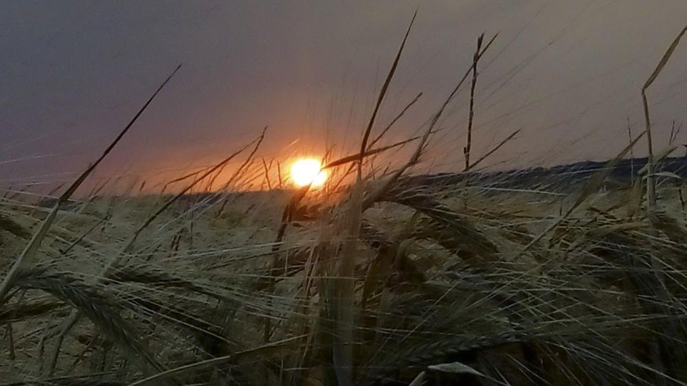 Ardèvol. El sol ja marxa, diu fins demà i vol deixar pas a la nit, la negra nit a Ardèvol amb les espigues al vent. Ardèvol és un poble del municipi de Pinós, al Solsonès