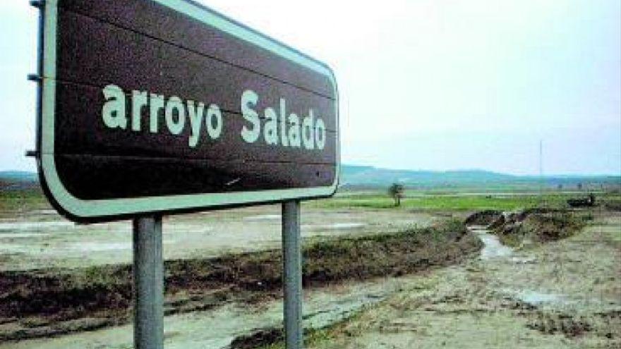 IU lleva al Pleno de Diputación el 'abandono' del arroyo Salado y sus afluentes para los que pide una actuación integral