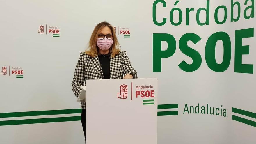 El PSOE destaca que hay más de 31.000 beneficiarios en Córdoba del decreto de empleo a personas con discapacidad